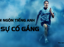 cham-ngon-tieng-anh-ve-su-co-gang
