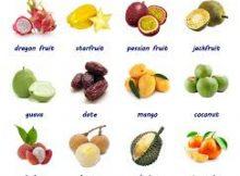 Học tiếng Anh theo chủ đề trái cây